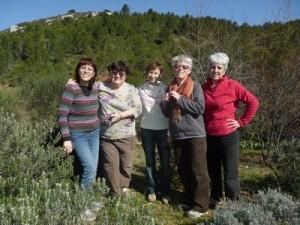 Février: reprise des travaux à la stèle et à la clairière de la faune